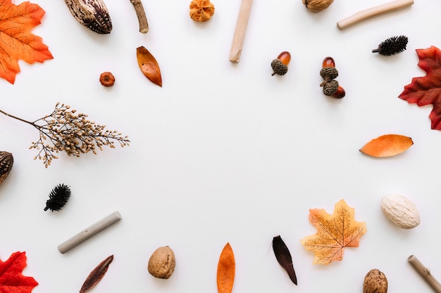 Autumn elements frame composition Free Photo