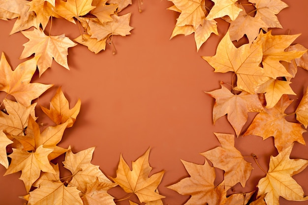 Autumn fall dired leaves border fame on brown Premium Photo