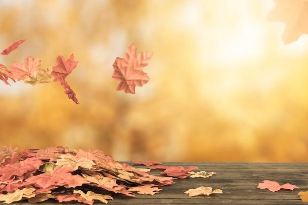 Осенняя листва, летящая под брошюрой Бесплатные Фотографии