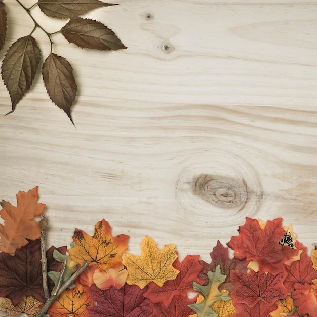 Autumn herbarium frame lying on wooden surface Free Photo