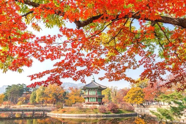 韓国の景福宮の秋。 無料写真