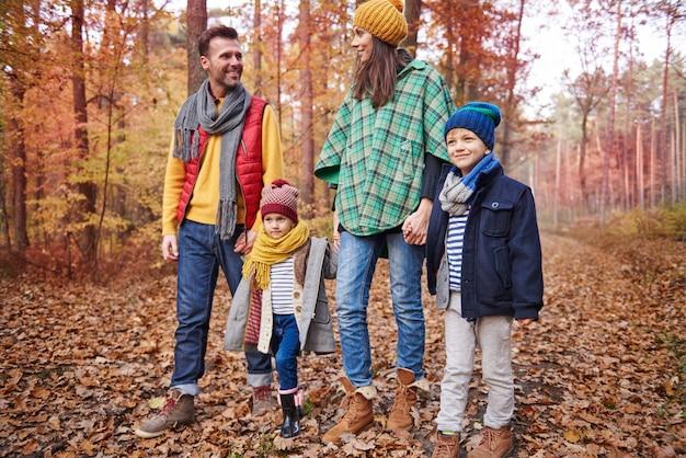 秋は散歩に最適な季節です 無料写真