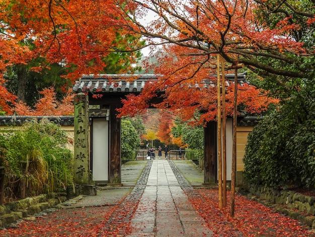 Autumn in kyoto Free Photo