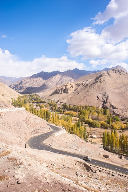 Autumn landscape in ladakh region, india. valley with trees and mountains background in fall. Premium Photo