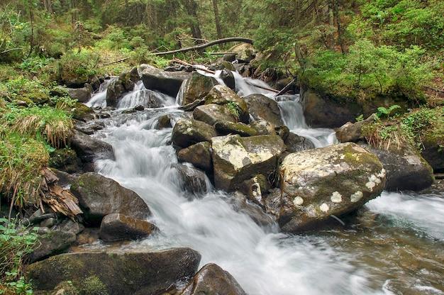 色とりどりの森に山の川が流れる秋の風景。美しいカスケードの小さな滝。森の中を流れる。 Premium写真