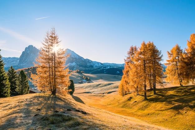 Осенний пейзаж с горами Premium Фотографии