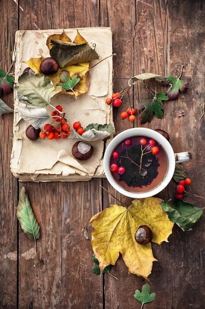 秋の葉の秋 Premium写真