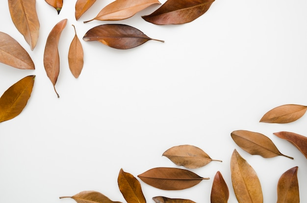 Autumn leaves flat lay with copy space Free Photo