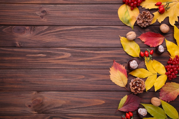 Autumn leaves with berries on a brown background Premium Photo