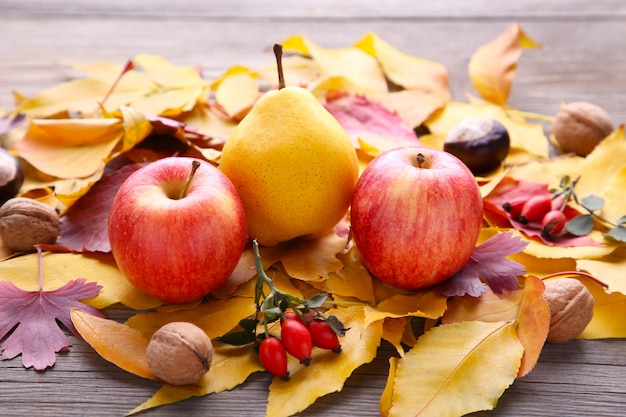 Autumn leaves with berries and vegetables on grey table Premium Photo