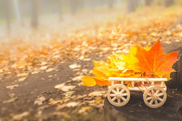 Autumn leaves on a wooden cart. soft selective focus Premium Photo