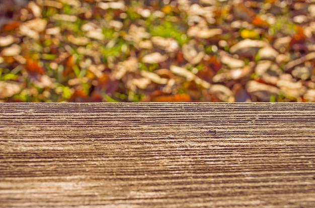 Autumn leaves and wooden surface background Premium Photo