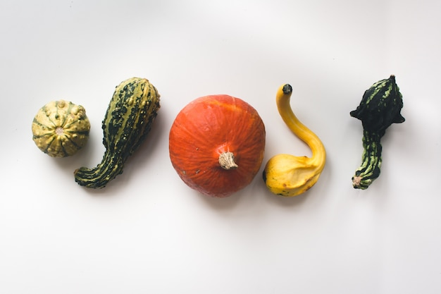 Autumn pumpkins on a plate on a white background Free Photo