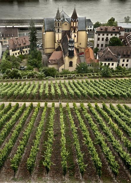 Scena autunnale intorno alla città bavarese di wurzburg, germania Foto Gratuite