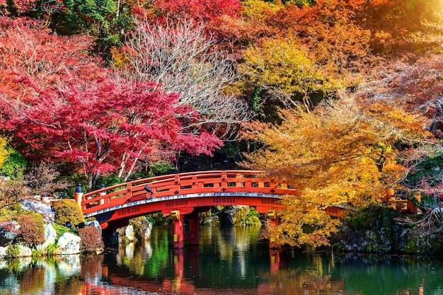 Осенний сезон в японии, красивый осенний парк. Бесплатные Фотографии