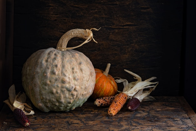 Autumn still life with pumpkins and corn on old wooden table. Premium Photo
