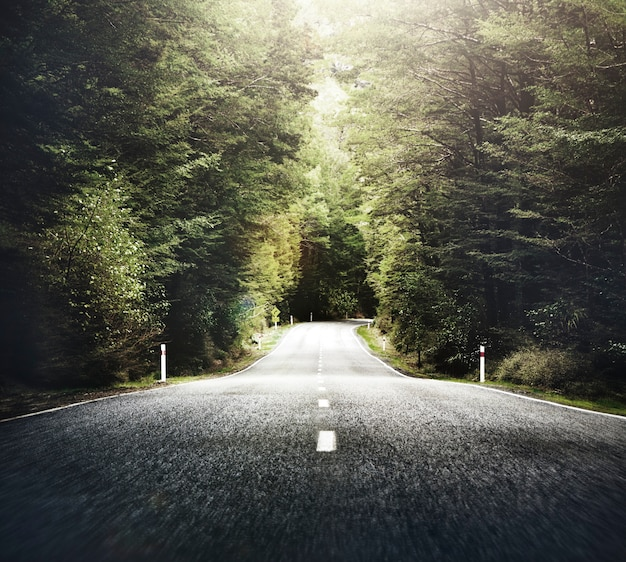Autumn Themed Country Road With Mountain Range Concept Free Photo