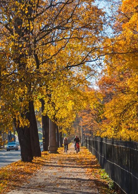 Осенний городской солнечный пейзаж с велосипедистами. Premium Фотографии