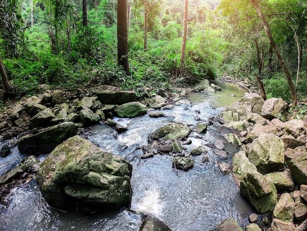 秋の滝ストリームシーン Premium写真