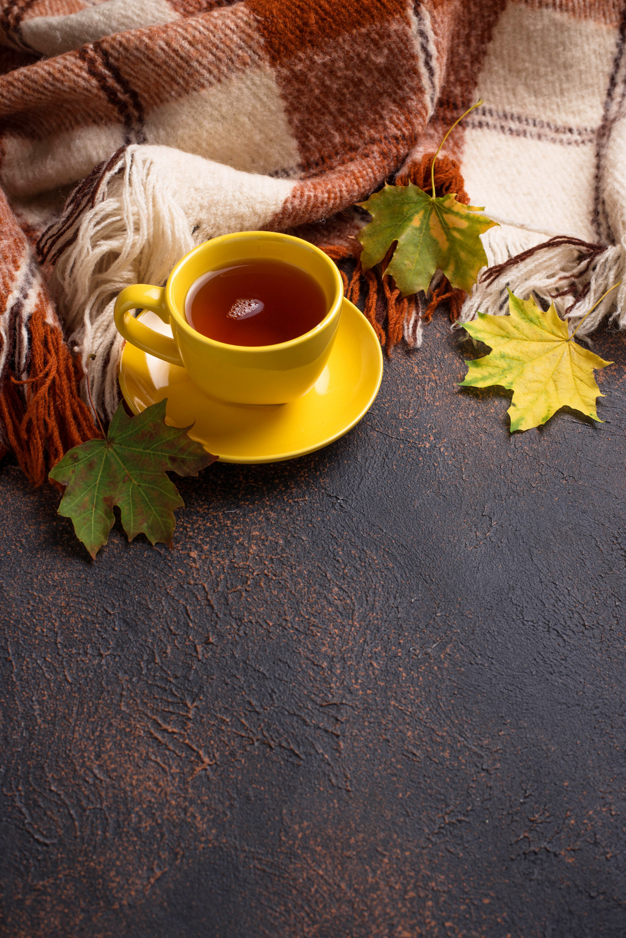 Autumn  with cup of tea, plaid and leaves Premium Photo