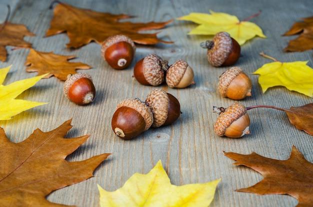 Осенние желтые листья и желуди на фоне дерева Premium Фотографии