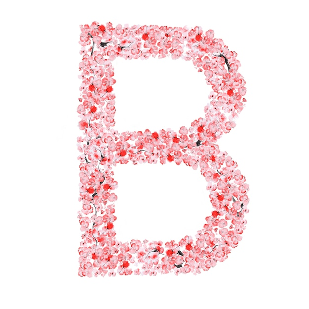 さくらの花のアルファベット。手紙b Premium写真