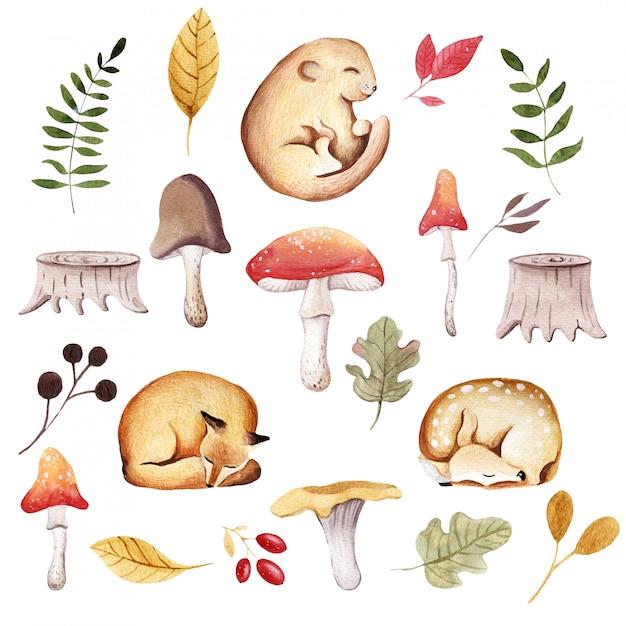 Baby animal and autumn illustration Premium Photo