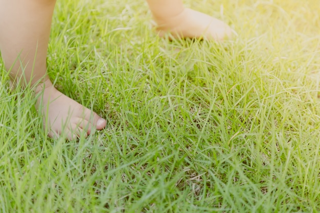 Baby feet on the lawn Free Photo