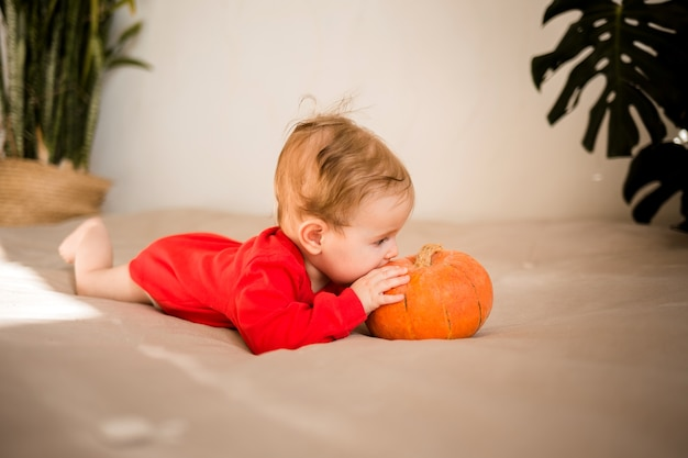 Девочка в красном боди лежит на кровати с тыквой Premium Фотографии