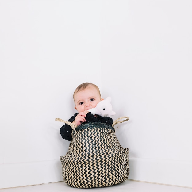 Baby in basket biting toy Free Photo