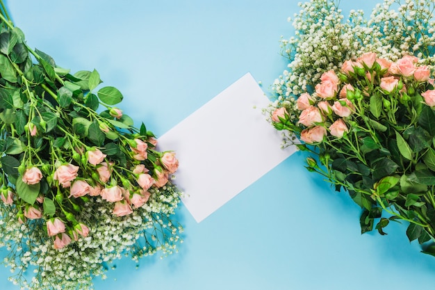 Baby's-breath flowers and roses with blank white card on blue background Free Photo