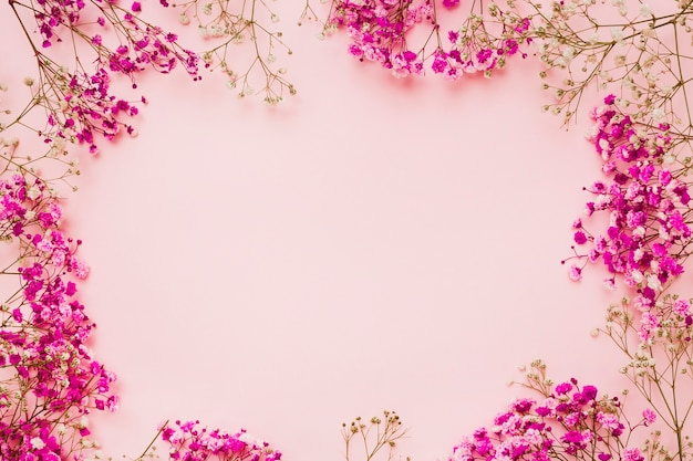 Baby's-breath flowers with space for text in the center Free Photo