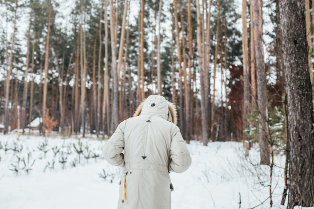 Back of man in winter coat walk into snow forest Free Photo