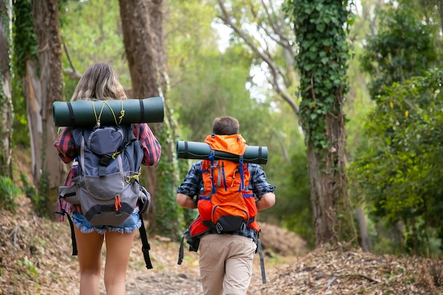 Back view of backpackers walking on mountainous trail. caucasian hikers or traveler carrying backpacks and hiking in forest together. backpacking tourism, adventure and summer vacation concept Free Photo