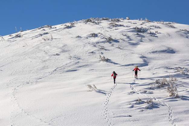 Back view of two tourist hikers with backpacks and hiking poles ascending snowy mountain slope on sunny winter day on white snow  extreme sport, recreation, winter holidays. Premium Photo