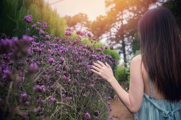 Back of woman touching purple verbena flower in morning. Premium Photo