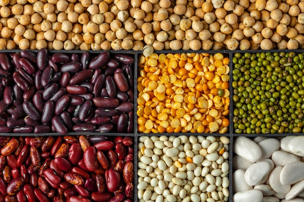 Background of assorted grains and beans in sections Premium Photo