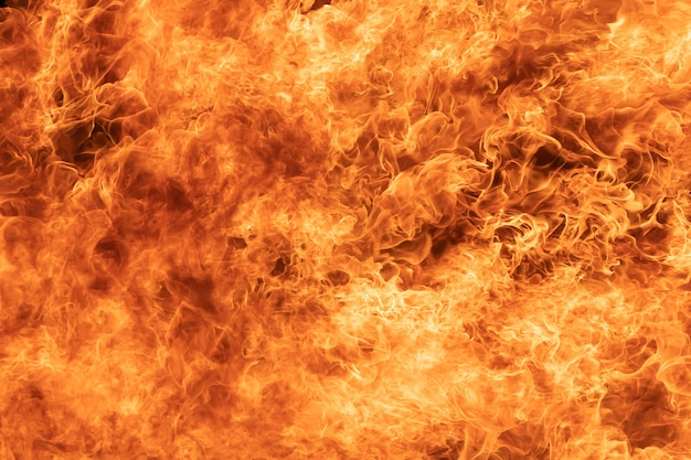 Background of blaze fire flame texture Premium Photo