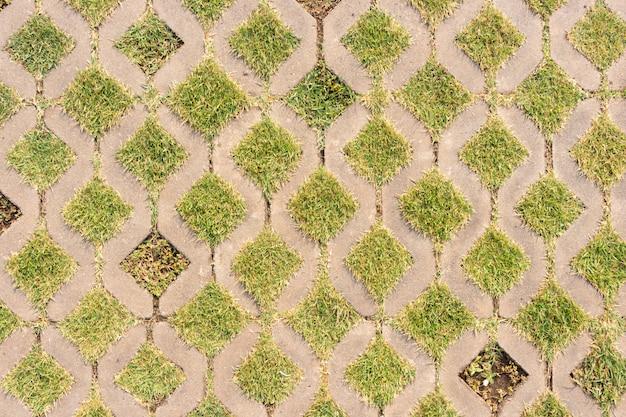 Background of concrete block walkway with green grass Premium Photo