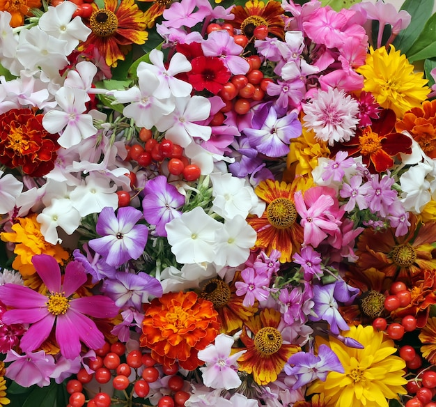 Background of garden flowers, top view. Photo