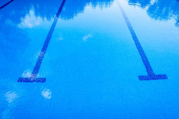 Background of a sports swimming pool Premium Photo