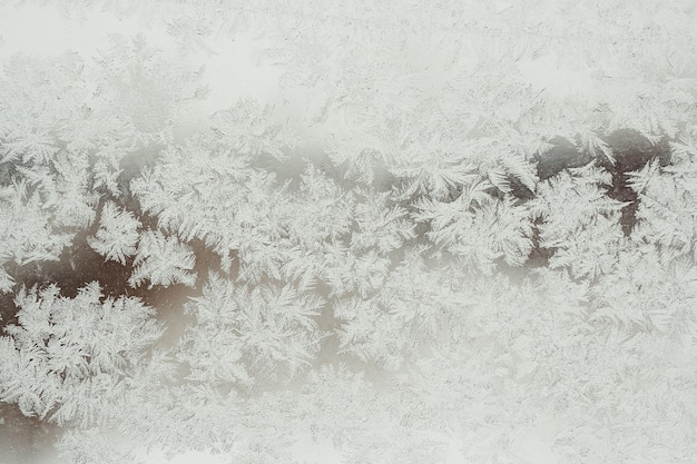 Background and texture of frozen glass in hoarfrost. winter. Premium Photo