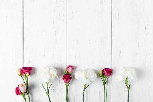 Background with carnations and roses. copy space Premium Photo