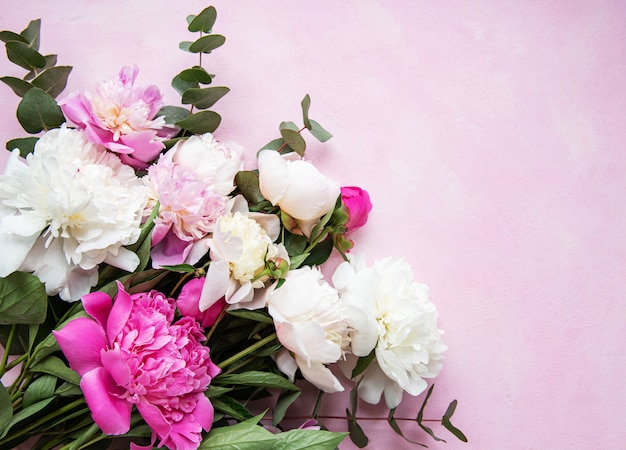 Background with pink peonies Premium Photo