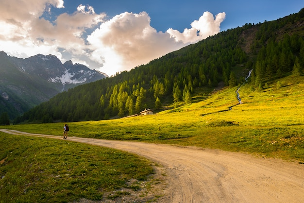 Backpacker hiking in idyllic landscape. summer adventures and exploration on the alps, through blooming meadow and green woodland set amid high altitude mountain range at sunset Premium Photo