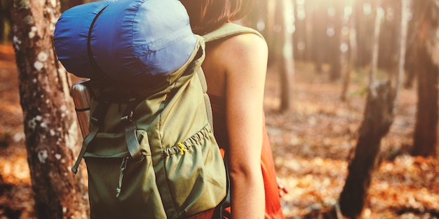 Backpacker traveling in the forest alone Free Photo