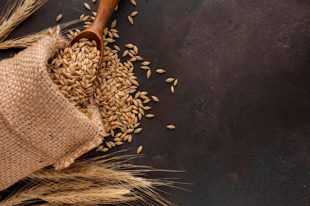 Bag of wheat seeds and wooden spoon Premium Photo
