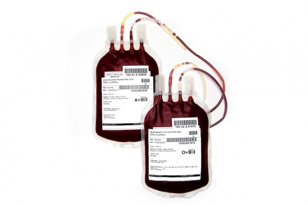 Bags of fresh blood Premium Photo