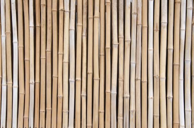 Bamboo background Premium Photo