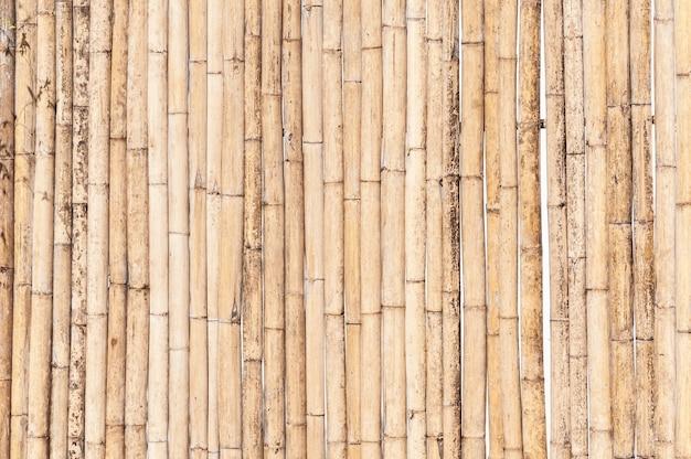 대나무 울타리 배경 프리미엄 사진